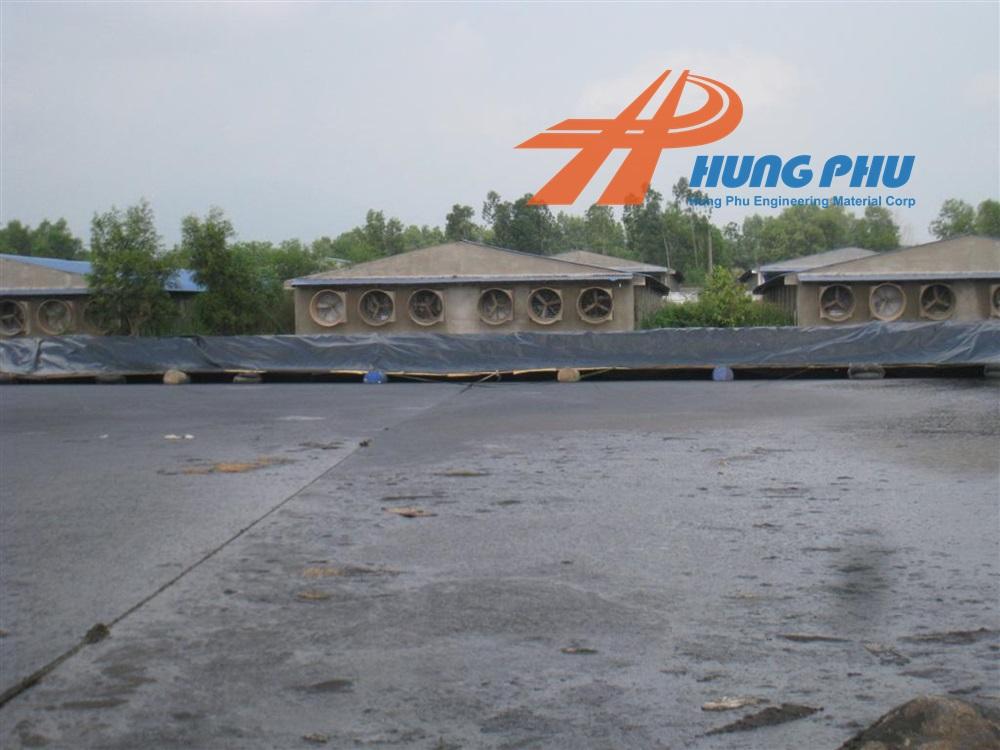 Thi công màng HDPE