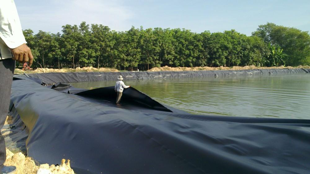 Thi công màng HDPE trên mặt nước